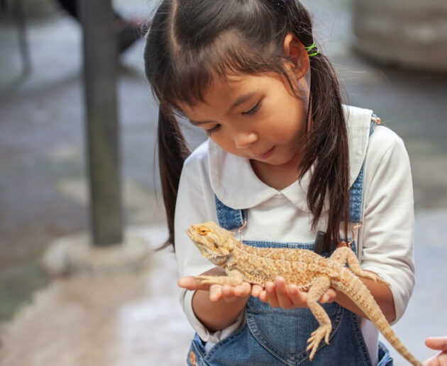 reptile food and asthma