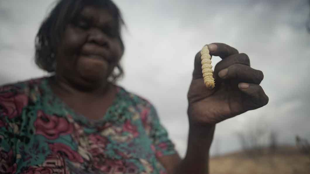 disability in indigenous communities